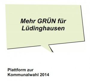 Front Wahlplattform